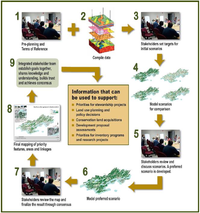 NHS_Process